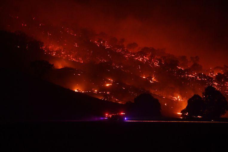 Bosbranden in New South Wales kostten aan zeker twintig mensen het leven, onder wie drie vrijwillige brandweerlieden. Beeld Getty Images