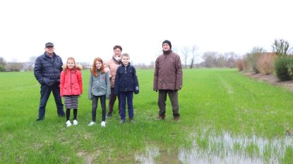 Project Rubensveld komt weer boven water