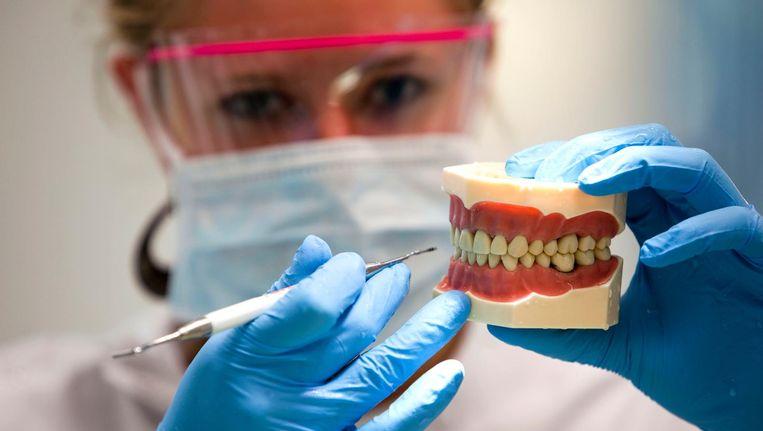 'Beginnende tandvleesontsteking is goed te behandelen. Als je dan goed poetst, komt het niet meer terug' Beeld anp