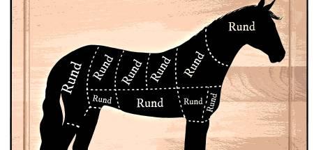 Gerommel met paardenvlees: rechter beboet eigenaar koelhuizen in Olst en Apeldoorn