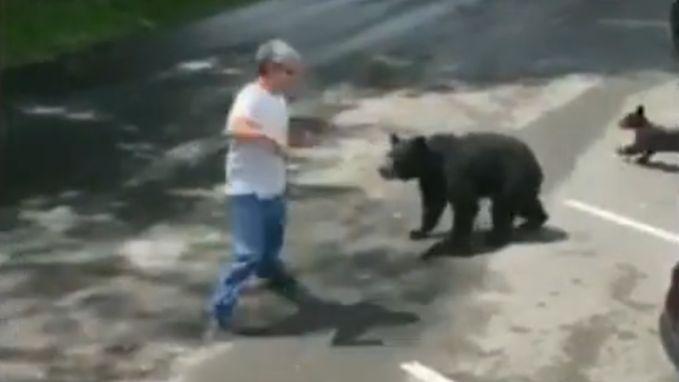 Niet slim: man die welpjes lokt, krijgt mamabeer op zijn dak