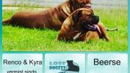 Twee honden al maand spoorloos verdwenen