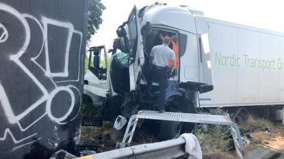 Trucker sterft na klap tegen pijler