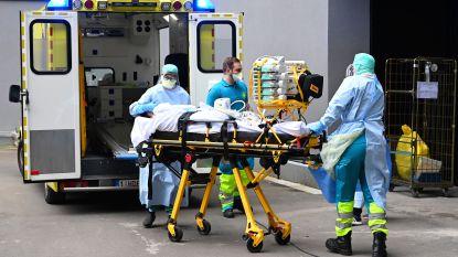 OVERZICHT. Dertien nieuwe overlijdens in ons land, maar specialisten zijn voorzichtig optimistisch na nieuwe cijfers