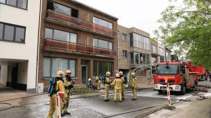 VIDEO. Appartement loopt zware schade op bij brand