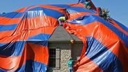 Gezin op de vlucht voor duizenden giftige spinnen