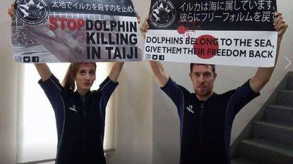Belgische (23) in cel nadat ze dolfijnenshow verstoort door in bad te springen