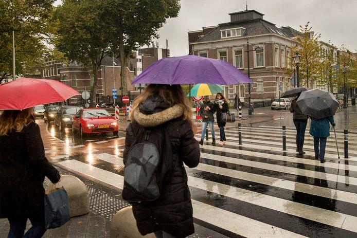 De zebra tussen het Valkenberg en de Willemstraat in Breda.
