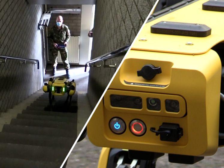 Schopt robothond Spot, zoemend in plaats van blaffend, het tot de landmacht?