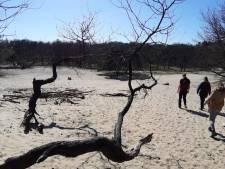 Verwarde man bedreigt man en vrouw met mes in Loonse en Drunense duinen