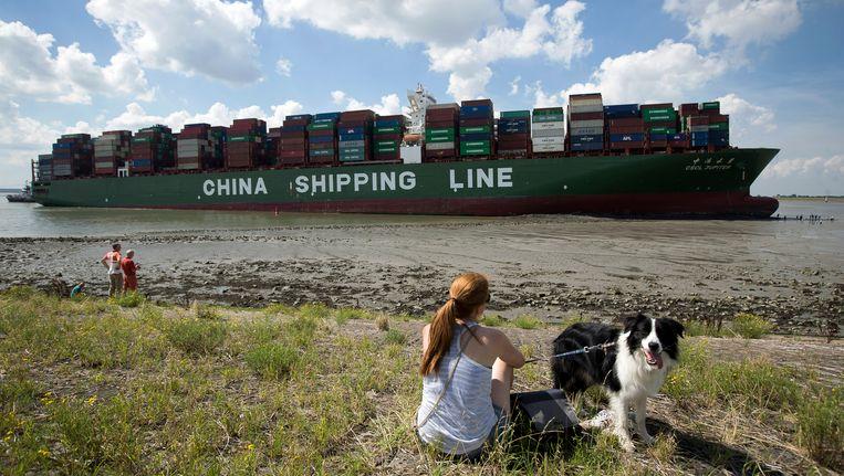 Een groot containerschip op slechts 80 meter van de dijk: het is geen alledaags tafereel.