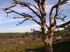 Een fietsenstalling op de Posbank?