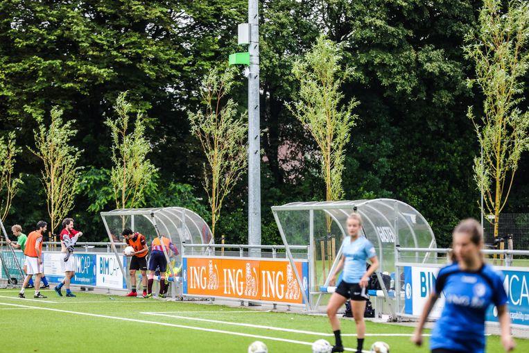 Het voetbalveld van WV-HEDW in Oost, met in het midden de lichtmast met de livestreamcamera. Beeld Eva Plevier
