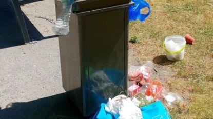 """Afval hoopt zich op in stadspark: """"We hebben opnieuw een parkwachter nodig"""""""