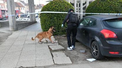 Drie wagens uitgebrand in Hoboken: politie stuurt explosievenhond ter plaatse