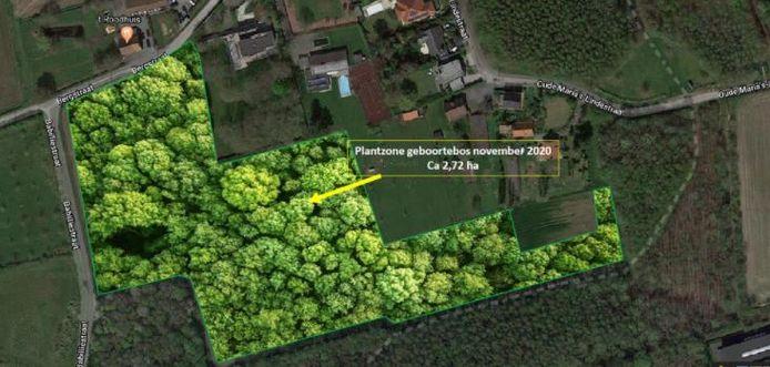 Hier wordt aangeplant in het Bergmolenbos.