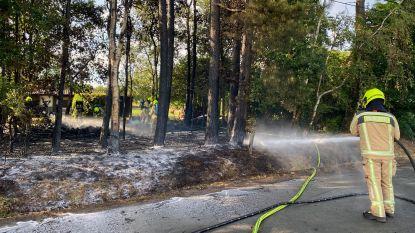 Brandweer bestrijdt bosbrand aan Buitenblokken