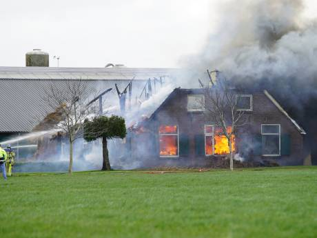 Drama voor gezin na boerderijbrand in Wesepe: 'Alleen hond, laptop en boekhouding gered van vlammenzee'