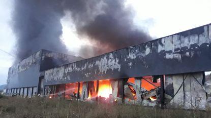 Twee miljoen kilo kaas in vlammen opgegaan
