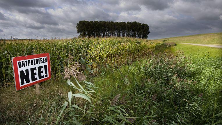 Een protestbord tegen ontpolderen in de Nederlandse Hedwigepolder in Zeeuws-Vlaanderen aan de Westerschelde op de grens met de Belgische Prosperpolder. Beeld ANP XTRA