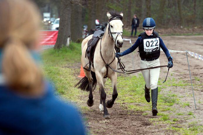 Voor en na de cross worden paard en ruiter onder toeziend oog van dierenarts gecontroleerd op blessures, hartslag en dergelijke. Dit om een veilige deelname aan de wedstrijd te garanderen. Hier 'draven' Quinora Klop met Pippa uit Halsteren gezamelijk een stukje.