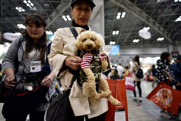 Honden kunnen natuurlijk beter zelf lopen, maar sommige baasjes houden hun viervoeter dicht bij hun hart.
