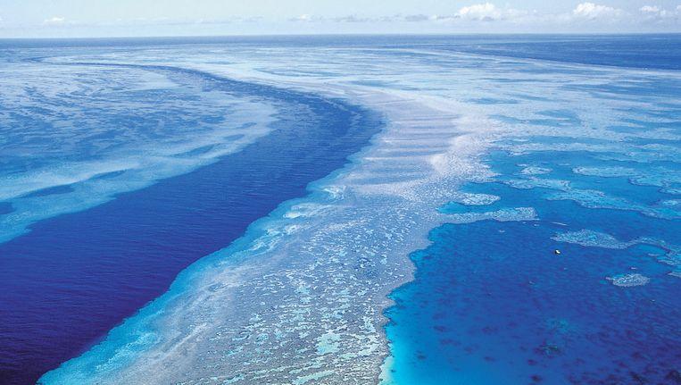 Het Great Barrier Reef, hier op archieffoto. Het rif is de laatste dertig jaar gehalveerd. Beeld AP