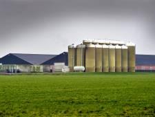 Varkensboeren Boekel: nieuwe geurnorm onaanvaardbaar