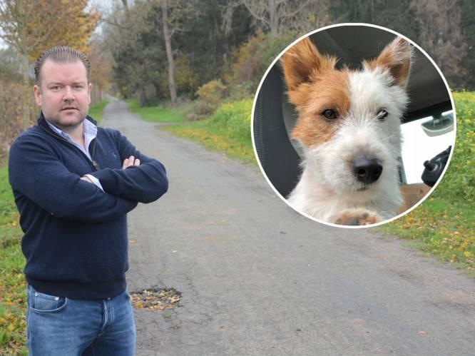 """Jogger steekt hondje dood voor ogen van zijn baasje: """"Dribbel deed geen vlieg kwaad"""""""