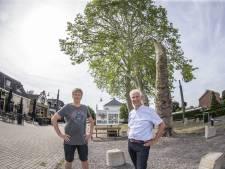 'Hof van Twente loopt risico door ontbreken van bomeninspectie'