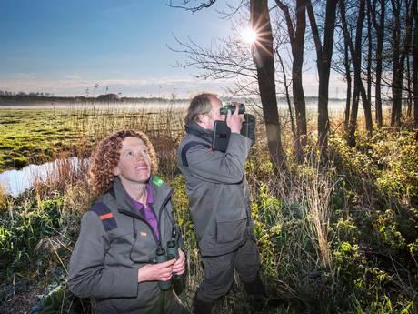 Boswachters brengen vogelsoorten in kaart