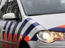 Dronken inbreker in Enschede verstopt zich voor blaffende honden