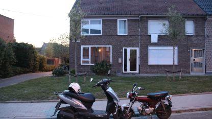 Politie ontdekt kleine plantage in wijk in Sint-Gillis-Dendermonde: tientallen planten in beslag genomen