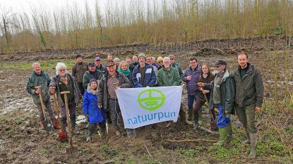 Vrijwilligers Natuurpunt planten nieuw 'Peertsbosch' aan tussen Pullewouwe en Louwijn
