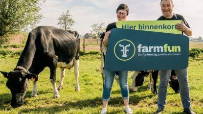"""Voortaan ook op teambuilding in De Biezenhoeve in Poperinge: """"Collega's kunnen de banden aanhalen  onder het goedkeurende oog van koeien"""""""