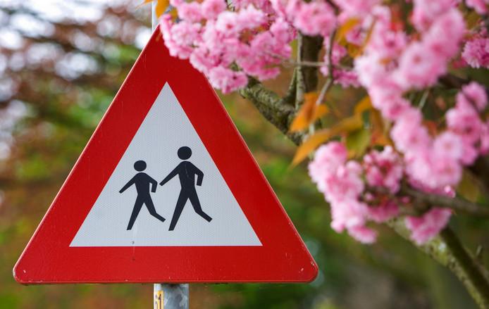 Er komen meerdere projecten om de verkeersveiligheid rond scholen te verbeteren, zoals een betere afstelling van verkeerslichten en automatische aanpassing van de voertuigsnelheid in drukke schooltijden