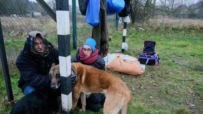 Patrick en Isabelle staan na 27 jaar op straat en brengen de nacht samen met hun twee honden door in een tent
