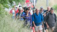 Adriaen Brouwertochten van Hanske De Krijger leiden naar Maarkedal