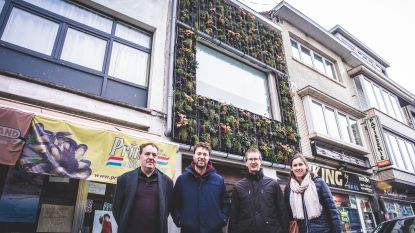 Verticale 'muurtuin' in Brugse Poort zuivert afvalwater voor hergebruik