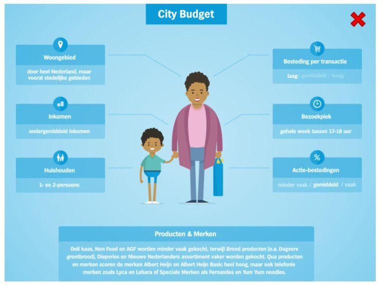 De 'City Budget'-klant van Albert Heijn. Beeld