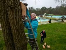 Heuveltjesbosbad in Balkbrug plaatst nestkastjes tegen eikenprocessierups