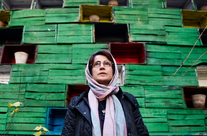 Nasrin Sotoudeh in 2014.